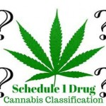 The Feds May Reschedule Cannabis Classification