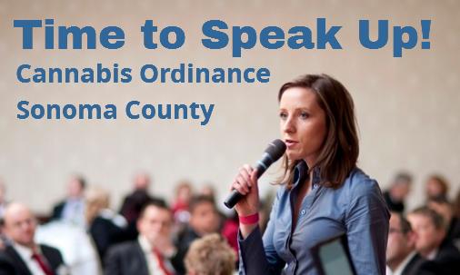 Cannabis Ordinance